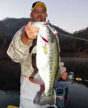 Ron Speed Jr of Exotic Outdoor Adventures with a qualiy Lake Comedero bass that fell for a Pop'R