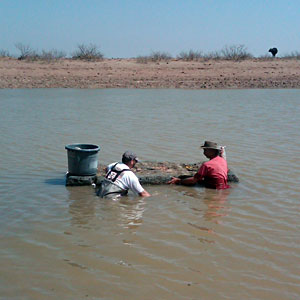 New Mexico B.A.S.S. Federation Nation wins Berkley Conservation Award for studying if gamefish will spawn on suspended artificial platform