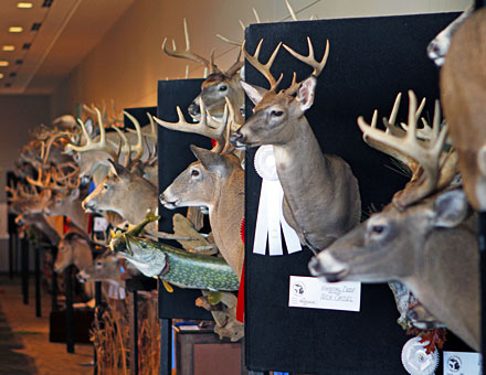 Big Buck Night West is another huge draw at the 2019 Ultimate Sport Show Grand Rapids, presented by Jimmy Gretzinger and Jenny Olson of the Michigan Out-of-Doors television show. Seating starts at 6:30 PM in Ballroom D Thursday night.