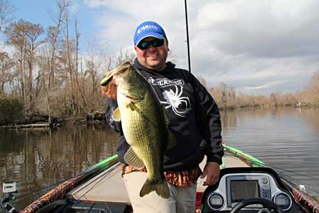 Bass pro Bill Lowen lands a nice Louisiana Delta largemouth while practicing for the 2011 Bassmaster Classic