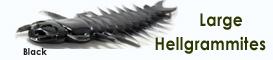 Case Plastics Large Hellgrammites
