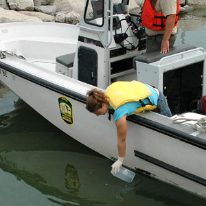 Michelle Budny from the University of Notre Dame collects a water sample from Lake Erie for Asian carp eDNA screening. Photo credit: Lindsay Chadderton, The Nature Conservancy